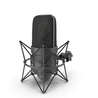 Microphone Black